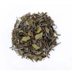 The Tea Embassy - Tee aus Hamburg - Schwarzer Tee - Darjeeling - Special White Ambootia