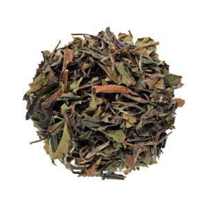 The Tea Embassy - Tee aus Hamburg - Grüner Tee - Weißer Tee - Pai Mu Tan